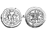 Half Shekel, copper, of Simon. Left: two thickly leaved branches, with a citron, &`;in the fourth year, one half&`;. Right: &`;Redemption of Zion&`;, palm tree between two baskets of dates.