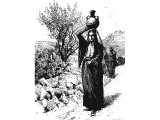 Women carrying water pots