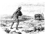 Sower, sowing seed, walking behind a plough