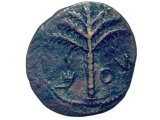 Coin - Shekel of Simeon, of the 2nd Jewish Revolt against Rome