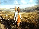 The hills of Samaria with women carrying water pots
