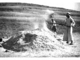 A threshing-floor. Grain is heaped and then winnowed by the farmer `whose fan is in his hand` (Matthew iii, 12).
