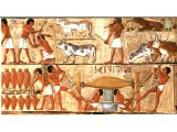 Cattle-herding (above) and wine-making (below). Painting from tomb of Puyemre, Thebes, Egypt. 15th century BC. Also, a slave is being beaten - cf. Exod.2:11.