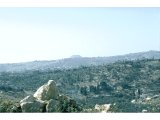 Herodium - across the Judean hills, from outside Bethlehem. Herodium is the flat-topped hill. Irony that Herod was buried here, overlooking Bethlehem where he had failed to eradicate Jesus.