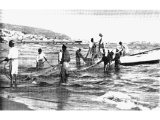 Tyre has become `a place for the spreading of nets in the midst of the sea`. Local fishermen are here seen early in the morning hauling in a seine or drag-net. The net has weights below and floats at the top.